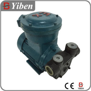 Ex-Proof Fule Transfer Pump for Gasoline Refueling (YB-60FB) pictures & photos