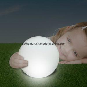 25cm Solar Globe Lawn Garden Light pictures & photos