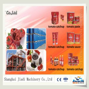 Tomato Paste Plant China pictures & photos
