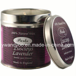 Scented Soy Wax Unique Birthday Tin Candle pictures & photos