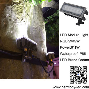 Outdoor Tree Decorative Waterproof RGB 6W LED Module Light pictures & photos