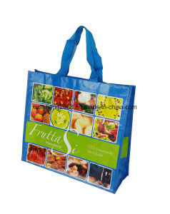 Customized PP Woven Shopping Bag with Laminated pictures & photos
