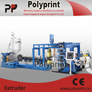 PP, PS Sheet Making Line (PPSJ-100-80-45B) pictures & photos