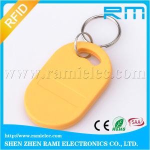 125kHz Low Frequency T5577 RFID ABS Keyfob/Keychain