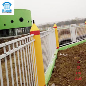 Rust-Proof/Antiseptic/High Quality Security Steel Fence for Farm pictures & photos