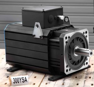 AC Permanent Magnet Servo Motor (300ysa17f 215nm 1700rpm) pictures & photos
