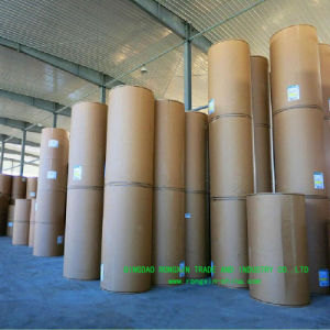 Single Side PE Coated Salt Sachet Paper in Roll pictures & photos