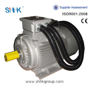 High Quality 3 Phase Electric Motors Price pictures & photos