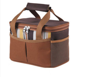 Eco-Friendly & Top Quality Cooler Bag pictures & photos