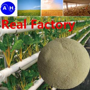 Amino Acid Chelate Calcium for Plant Organic Calcium Fertilizer Amino Acid pictures & photos