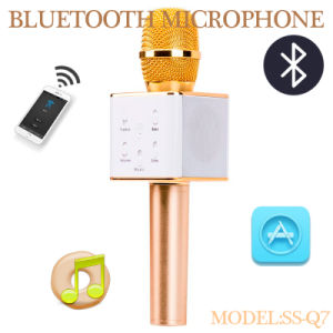 Outdoor Mini Size Bluetooth Tour Guide Microphone Speaker-Ssq7 pictures & photos