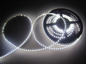 335 Single Color 120LED/M LED Strip with UL pictures & photos