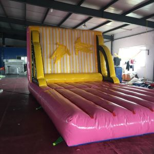 PVC Inflatable Jungle Slide for Amusement Park pictures & photos