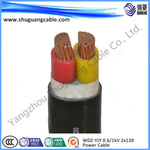 XLPE Insulated Armored Electric Cable pictures & photos