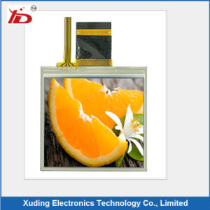 Customised Transparent Display Tn and Stn Small LCD Module pictures & photos