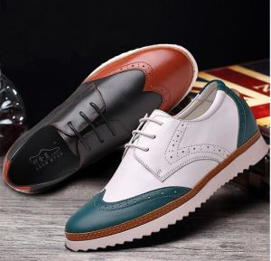 CF 2018 New Arrive Fashion Trend Height Increasing Elevator White Casual Shoes