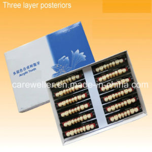 Multi Layer Synthetic Resin Teeth (Three Layer) pictures & photos