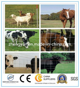 Farm Field Deer Fence Cattle Fence Field Fence (factory Price) pictures & photos