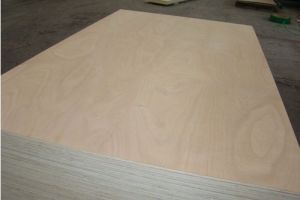 The Construction Board Material MDF Wd150176 pictures & photos