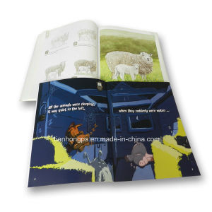 Fashional Traveling Soft-Cover Catologue Printing pictures & photos