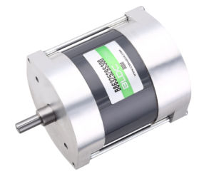 High Voltage Brushless Motor B86mm