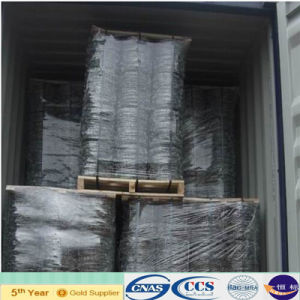 Electro Galvanized Barbed Wire for Fence (XA-BW10) pictures & photos