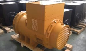 Faraday AC Alternator Generator with Pmg Wuxi Factory pictures & photos