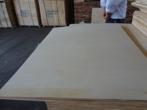 Poplar Plywood High Quality for Packing 8mm pictures & photos