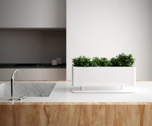 Uispair High Quality 100% Steel Desktop Pot Garden Furnirture pictures & photos