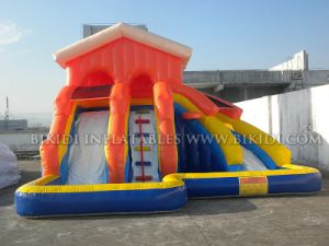 Multiple Lanes Inflatable Water Slide for Rental, China Inflatables Supplier pictures & photos
