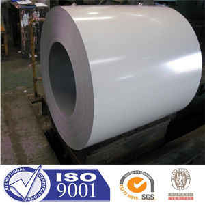 Prepainted Galvanized Steel Coil/PPGI/Colored Steel Coil (FACTORY)