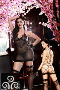 Adult Sexy Lace Lingerie The Visual Garments Qx9895