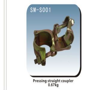 Bs1139/En74 Standards Scaffolding Galvanized Snap Coupler pictures & photos