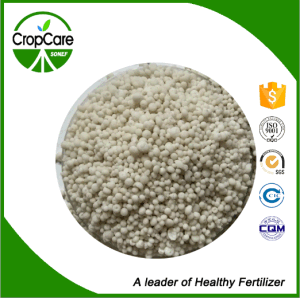 Water Soluble Fertilizer NPK (30-10-10+TE) Fertilizer Manufacturer pictures & photos