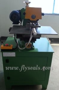 Polishing Machine for Swg Ring pictures & photos