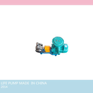 Ycb0.6/0.6 Explosion Proof Circular Gear Oil Pump pictures & photos