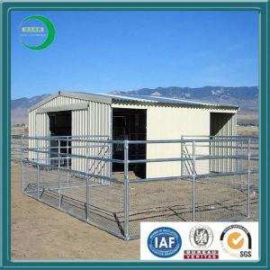 Livestock - Heavy Duty Panels, Sale (xy35) pictures & photos