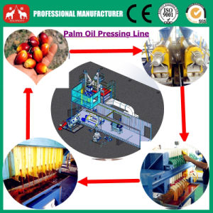 1t-20t/H Whole Line Plam Oil Processing Equipment pictures & photos