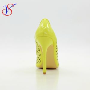Sex Women High Heel Dress Shoes for Party Sv-Wf 001 pictures & photos