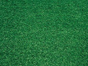Artificial Grass for Golf (A320222QE06601)