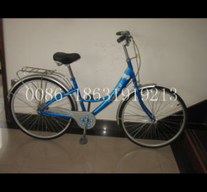 "26"" Bicycle Steel Frame Lady Bike with Rear Carrier (HC-LD-2696) pictures & photos"