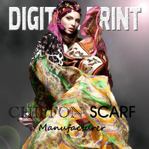 Digital Printed Chiffon Scarf pictures & photos