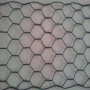 Galvanized Hot Dipped Hexagonal Wire Mesh pictures & photos