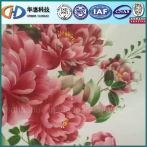 PPGI / Color Coated Steel Coil with Flower Paint pictures & photos