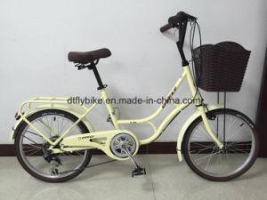 Bike, City Bike, 20inch Holland, Shiamno 6s pictures & photos