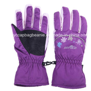 Ski Gloves / Snow Gloves / Winter Fleece Gloves pictures & photos