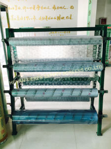 PVC Soft Sheet Coloured and Clear Sheets pictures & photos