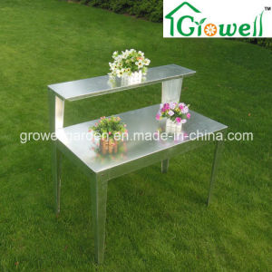 Galvanized Steel Staging for Greenhouse (PB323T) pictures & photos