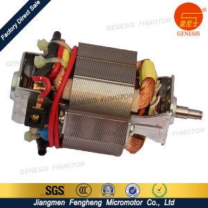 Home Appliance 220V-240V Juicer Mixer Blender Motor Brush pictures & photos