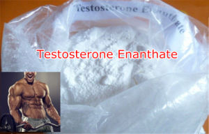 Testosterone Enanthate pictures & photos